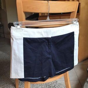 J.Crew Navy & White Shorts NEW!